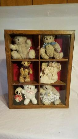 Wood and Glass Shadow Box Display Case, 6 Compartment, Teddy